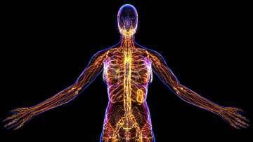 NeuroBioMed-Coaching und Mentaltraining 2